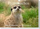 Erdmännchen - Die Kobolde im Tierreich (Wandkalender 2022 DIN A4 quer)