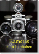 Kameras zum liebhaben (Wandkalender 2022 DIN A3 hoch)