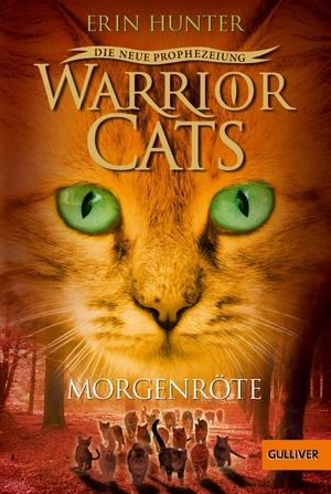 Erin Hunter / Klaus Weimann. Warrior Cats - Die ne
