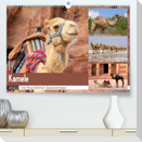 Kamele - Die freundlichen Gepäckträger (Premium, hochwertiger DIN A2 Wandkalender 2022, Kunstdruck in Hochglanz)
