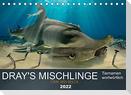 Dray's Mischlinge (Tischkalender 2022 DIN A5 quer)