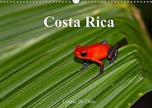 Di Chito, Ursula. Costa Rica (Wandkalender 2022 DIN A3 quer) - Costa Rica - Land der Regenwälder und Vulkane (Monatskalender, 14 Seiten ). Calvendo, 2021.