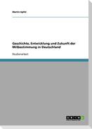 Geschichte, Entwicklung und Zukunft  der Mitbestimmung in Deutschland