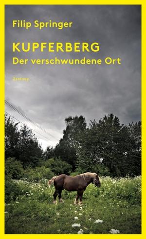 Filip Springer / Lisa Palmes. Kupferberg - Der verschwundene Ort. Zsolnay, Paul, 2019.