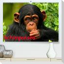 Schimpansen (Premium, hochwertiger DIN A2 Wandkalender 2022, Kunstdruck in Hochglanz)