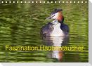 Faszination Haubentaucher (Tischkalender 2021 DIN A5 quer)