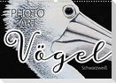 Vögel Schwarzweiß Photo Art (Wandkalender 2021 DIN A3 quer)