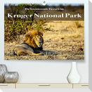 Faszination Kruger National Park (Premium, hochwertiger DIN A2 Wandkalender 2022, Kunstdruck in Hochglanz)