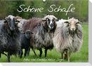 Schöne Schafe (Wandkalender 2022 DIN A2 quer)