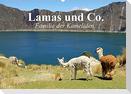 Lamas und Co. Familie der Kameliden (Wandkalender 2022 DIN A2 quer)