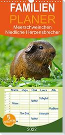 Meerschweinchen Niedliche Herzensbrecher (Wandkalender 2022 , 21 cm x 45 cm, hoch)