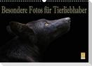 Besondere Fotos für Tierliebhaber (Wandkalender 2021 DIN A3 quer)