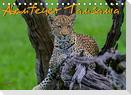 Abenteuer Tansania, Afrika (Tischkalender 2022 DIN A5 quer)