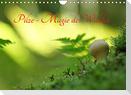 Pilze - Magie des Waldes (Wandkalender 2022 DIN A4 quer)