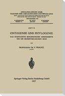 Ontogenie und Phylogenie