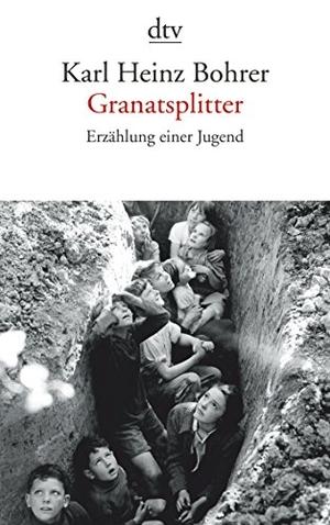Karl Heinz Bohrer. Granatsplitter - Erzählung einer Jugend. dtv Verlagsgesellschaft, 2014.