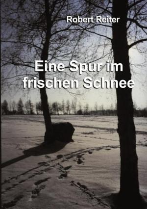 Reiter, Robert. Eine Spur im frischen Schnee. Book