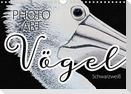 Vögel Schwarzweiß Photo Art (Wandkalender 2021 DIN A4 quer)