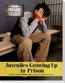 Juvenilesgrowing Up in Prison
