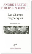 Champs Magnetiques