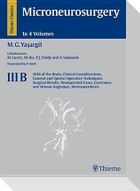 Microneurosurgery, Volume Iiib: Avm of the Brain, Clinical Considerations, General and Special Operative Techniques, Surgical Results, Nonoperated Cas