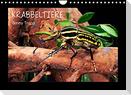 Krabbeltiere (Wandkalender 2022 DIN A4 quer)