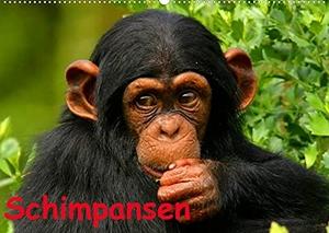 Stanzer, Elisabeth. Schimpansen (Wandkalender 2022 DIN A2 quer) - Des Menschen nächster Verwandter aus Mittelafrika (Monatskalender, 14 Seiten ). Calvendo, 2021.