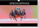Springspinne Kalender (Wandkalender 2022 DIN A4 quer)