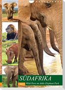 SÜDAFRIKA Wild-Tiere im Addo Elephant Park (Wandkalender 2022 DIN A4 hoch)