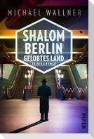 Shalom Berlin - Gelobtes Land