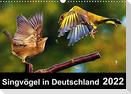 Singvögel in Deutschland (Wandkalender 2022 DIN A3 quer)