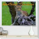 Abenteuer Tansania, Afrika (Premium, hochwertiger DIN A2 Wandkalender 2021, Kunstdruck in Hochglanz)
