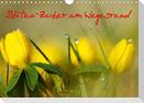 Blüten-Zauber am Wegesrand 2021 (Wandkalender 2021 DIN A4 quer)