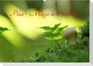 Pilze - Magie des Waldes (Wandkalender 2022 DIN A2 quer)