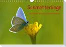 Schmetterlinge-Auf den Wiesen unserer Heimat (Wandkalender 2021 DIN A4 quer)