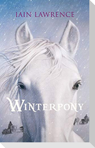 Winterpony