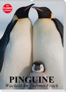 Pinguine. Wackeln im Thermo-Frack (Wandkalender 2021 DIN A2 hoch)
