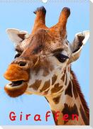 Giraffen (Wandkalender 2022 DIN A3 hoch)