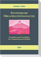 Systemische Organisationsanalyse