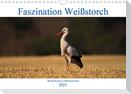 Faszination Weißstorch (Wandkalender 2021 DIN A4 quer)