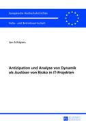 Antizipation und Analyse von Dynamik als Auslöser von Risiko in IT-Projekten