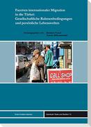 Facetten internationaler Migration in die Türkei: Gesellschaftliche Rahmenbedingungen und persönliche Lebenswelten