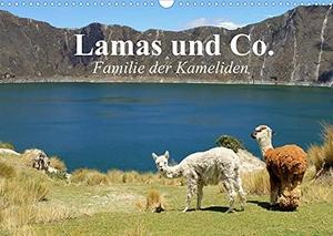 Stanzer, Elisabeth. Lamas und Co. Familie der Kameliden (Wandkalender 2022 DIN A3 quer) - Schöne Alpakas, Lamas und weitere Kameliden aus der Paarhufer-Familie (Monatskalender, 14 Seiten ). Calvendo, 2021.