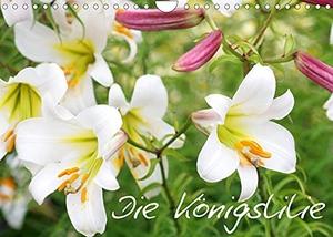 Kruse, Gisela. Die Königslilie (Wandkalender 2022 DIN A4 quer) - Eine Hommage an die majestätische Königslilie in wunderschönen Fotos (Monatskalender, 14 Seiten ). Calvendo, 2021.