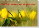 Blüten-Zauber am Wegesrand 2021 (Wandkalender 2021 DIN A3 quer)