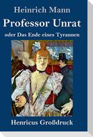 Professor Unrat (Großdruck)