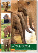 SÜDAFRIKA Wild-Tiere im Addo Elephant Park (Wandkalender 2022 DIN A2 hoch)