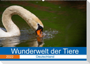 Wunderwelt der Tiere - Deutschland (Wandkalender 2022 DIN A2 quer)