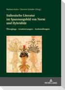 Italienische Literatur im Spannungsfeld von Norm und Hybridität