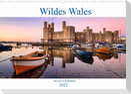 Wildes Wales (Wandkalender 2022 DIN A3 quer)
